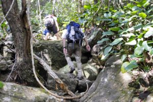Aufstieg zum Tepui